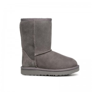 Boots Ugg Classic Gris
