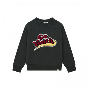 Sweatshirt Embroidered Storm